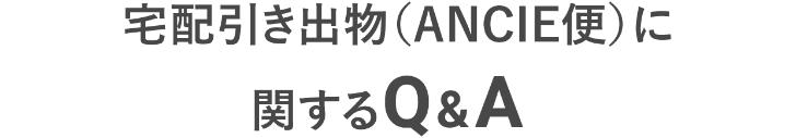 引き出物宅配(ANCIE便)に関するQ&A