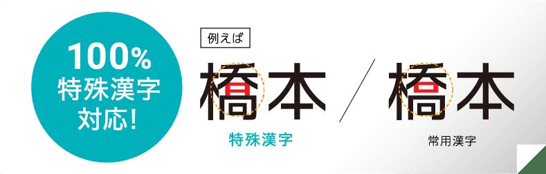 100% 特殊漢字対応!